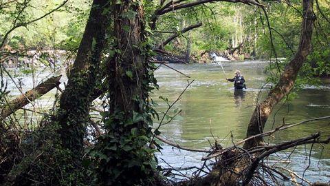 O Refuxio, isla del río Tambre situada en el municipio de Sigüeiro.