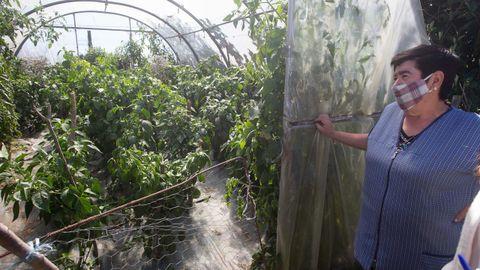 El único furancho de Lugo está en Portomarín y ofrece comida casera
