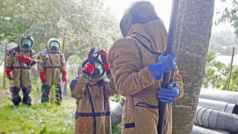 El técnico Miguel Rodríguez aplica el insecticida valiéndose de una pértiga para alcanzar los aproximadamente siete metros de altura a los que se encuentra el nido