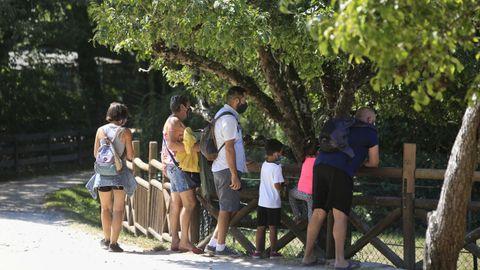 Las visitas a Marcelle se sitúan este verano en niveles similares a los de antes de la pandemia
