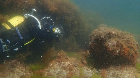 Un arqueólogo subacuático en una prospección anterior, en la ría viveirense, en el pecio de la Magdalena