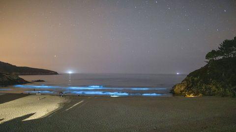 El mar de ardora en Rebordelo (Cabana) ha atraído a numerosas personas (y coches) estos días