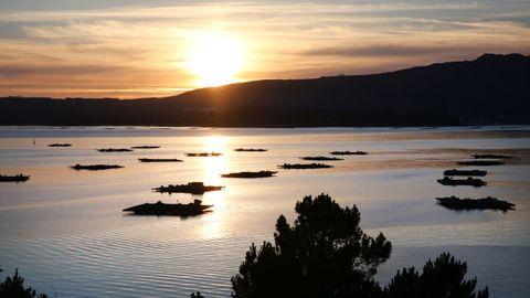 Bateas de la ría de Arousa, desde A Illa.