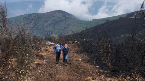 Técnicos del Centro de Investigación Forestal de Lourizán evaluaron sobre el terreno los daños causados por el incendio