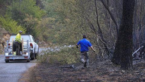 Tareas de reparación de líneas eléctricas dañadas en Quiroga el pasado miércoles