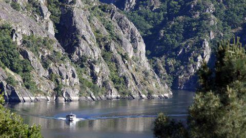 Un catamarán navega por el río Sil.