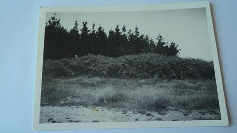 Imaxe do sitio orixinal, onde estivo o círculo lítico