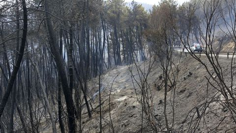 Terrenos quemados por el incendio junto a la carretera LU-933 en la parroquia de Nocedo, del municipio de Quiroga