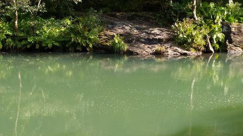 El agua presentaba este color en algún tramo hace unos días