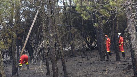 Trabajos de reparación de una línea eléctrica dañada por el fuego en el municipio de Quiroga, el pasado día 7