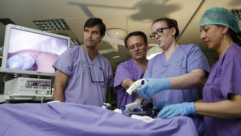 José Noguera (segundo por la izquierda) es el presidente del comité organizador del Congreso Nacional de Cirugía que se celebrará en A Coruña