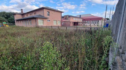 La maleza cubre las instalaciones del antiguo colegio de Baamonde