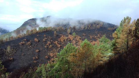 El fuego devastó una ladera de un monte que estaba colonizada por rebollos o cerquiños. La imagen está tomada desde la carretera que lleva a Vilar de Lor, en el municipio de Quiroga