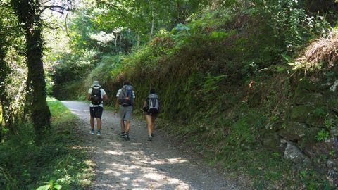 Peregrinos caminando cerca en la zona por donde se cree que discurría la vía XIX romana
