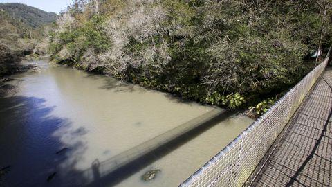 Aspecto del río Eume, en octubre de 2020, a raíz de los vertidos de lodos