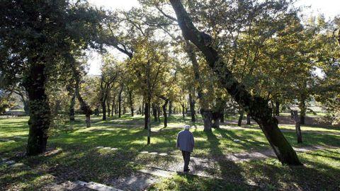 Parque de Caldas de Reis.