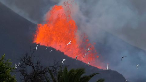 Lava y humo, esta mañana en La Palma