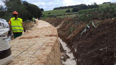 Barreras vegetales para evitar la expansión del vertido de purines de Trazo, que afectó al abastecimiento de agua de Santiago