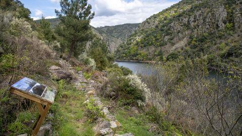 Un panel explicativo en la ruta de senderismo de A Empardeada, en la ribera soberina del cañón del Sil