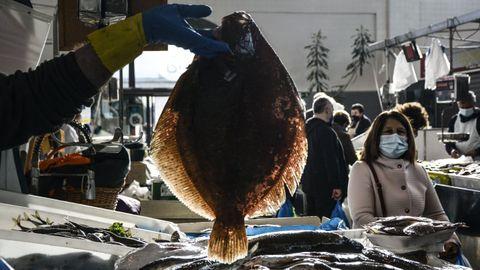 Espléndido rodaballo que muestran en una pescadería tradicional (foto de archivo)