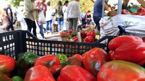 Las verduras mariñanas (en la foto, un mercado) son muy apreciadas por consumidores locales y por visitantes.