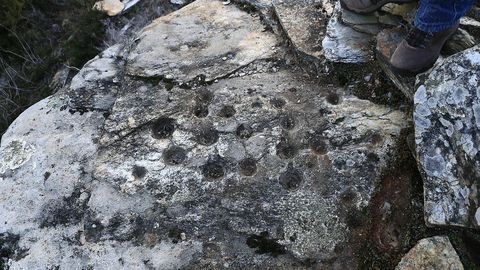 Los petroglifos de la Serra de Santa Mariña, en O Incio