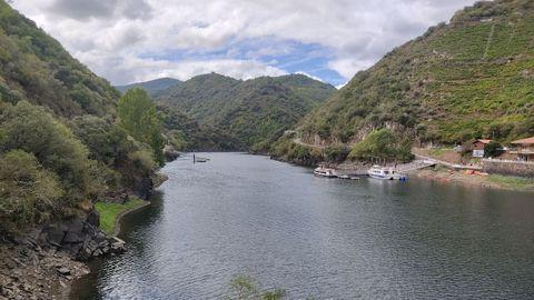 Embarcaciones turísticas de la Diputación en el club náutico de Ponte do Sil (en Monforte) durante el pasado puente festivo
