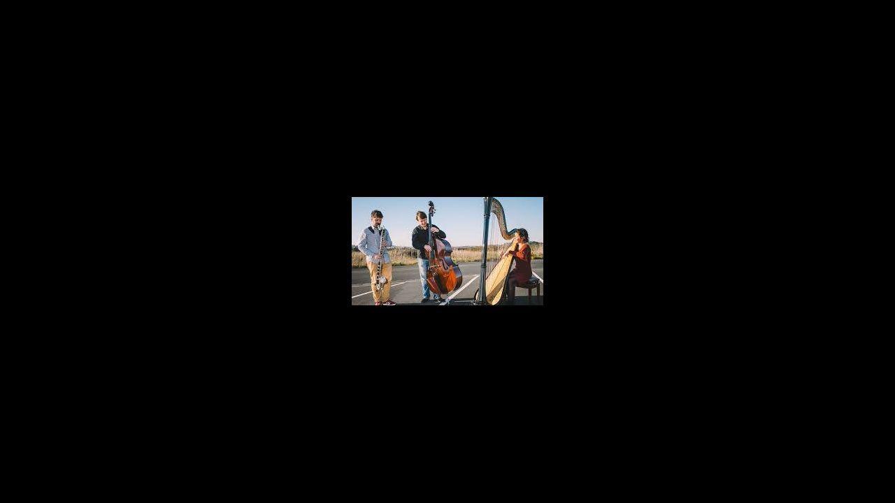 El Brentano String Quartet actuará en el Círculo das Artes