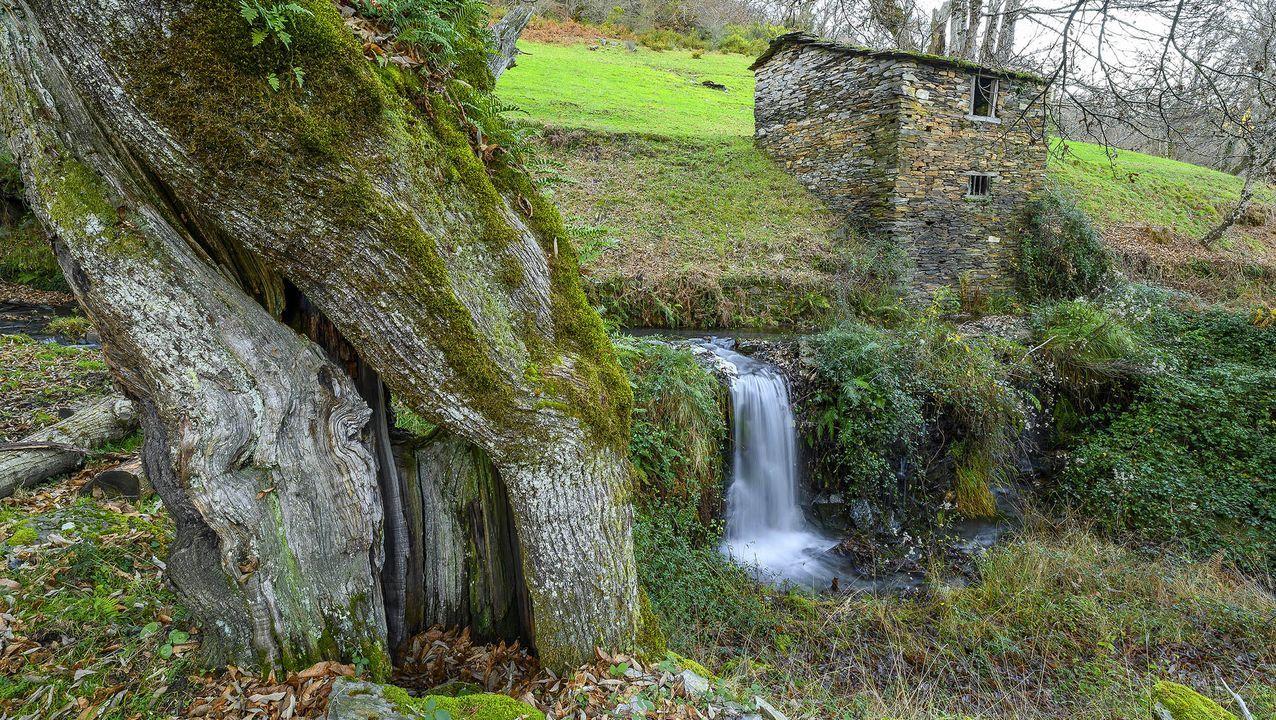 Salto de agua junto a una antigua cabaña en O Corgo