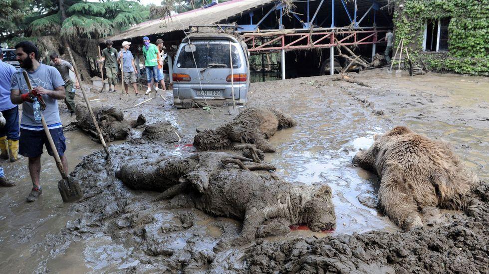 Los efectos de las inundaciones en Georgia