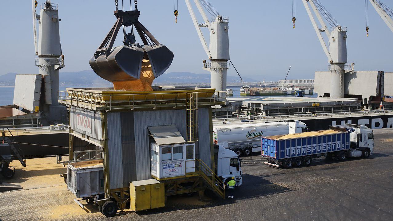 Percebe subastado en el Muro.Image de la descarga de un buque llegado al puerto exterior de A Coruña desde Brasil a principios de agosto