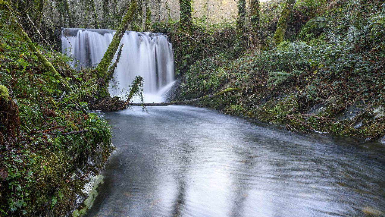 La presa denominada del Prado Novo es una de las tres que hay que en el cauce del río