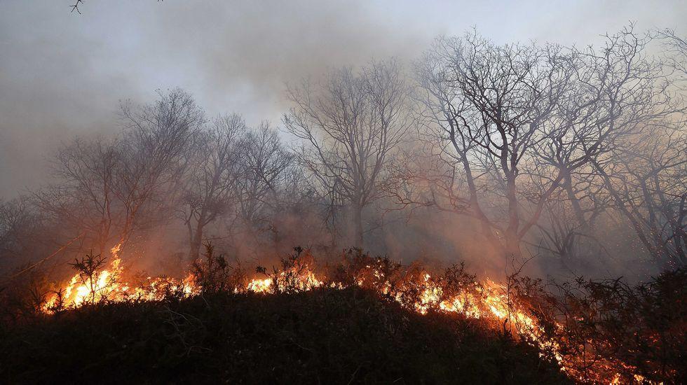 Incendios rodeando Barcena Mayor.