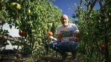 Juanjo Rodríguez muestra unos tomates de su huerta de Vilamarín