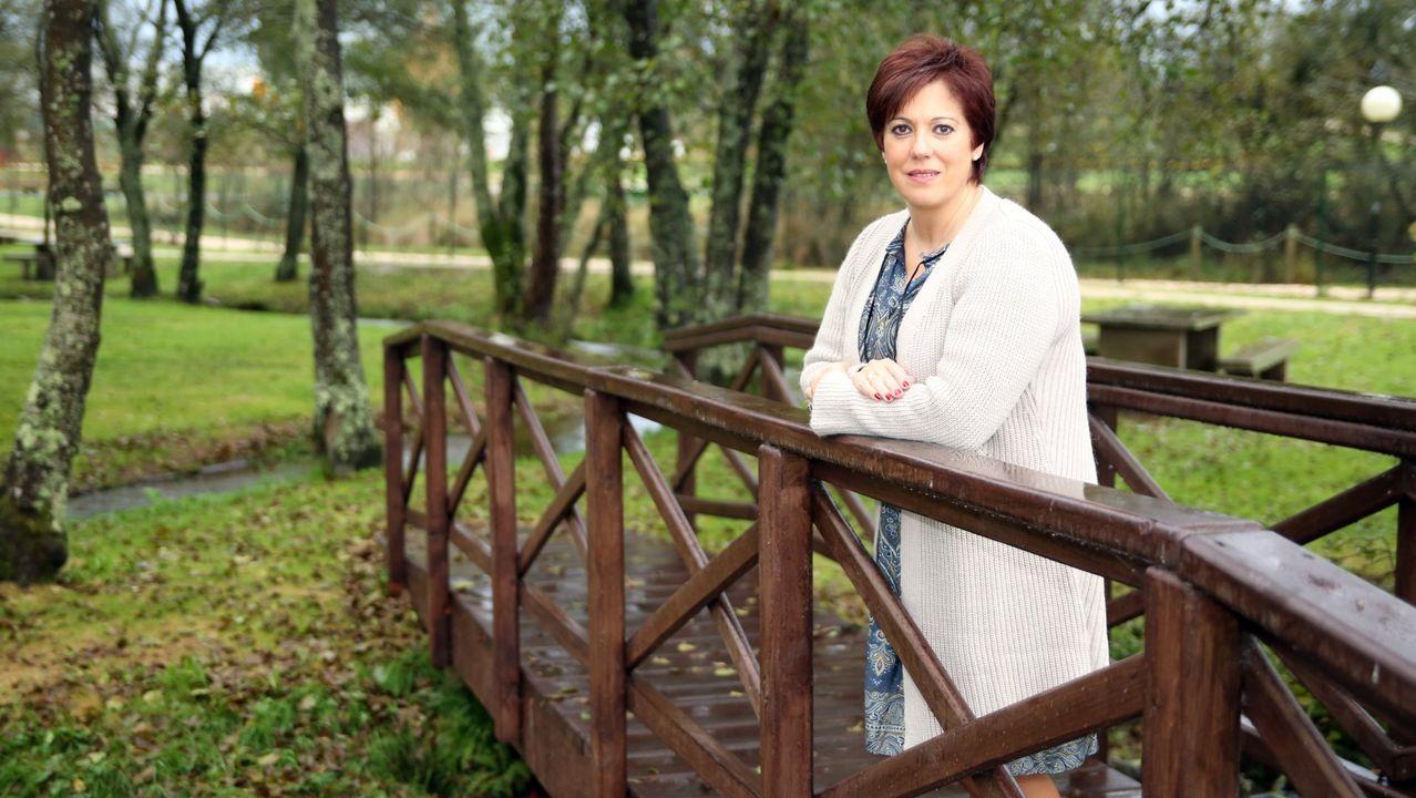 Los principales candidatos del 5A para las autonómicas.Pleno del Parlamento de Galicia