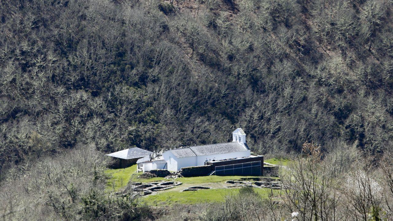 Galicia en alerta por la borrasca Helena.Nido de avispa velutina retirado por operarios de la Mancomunidad de O Salnés
