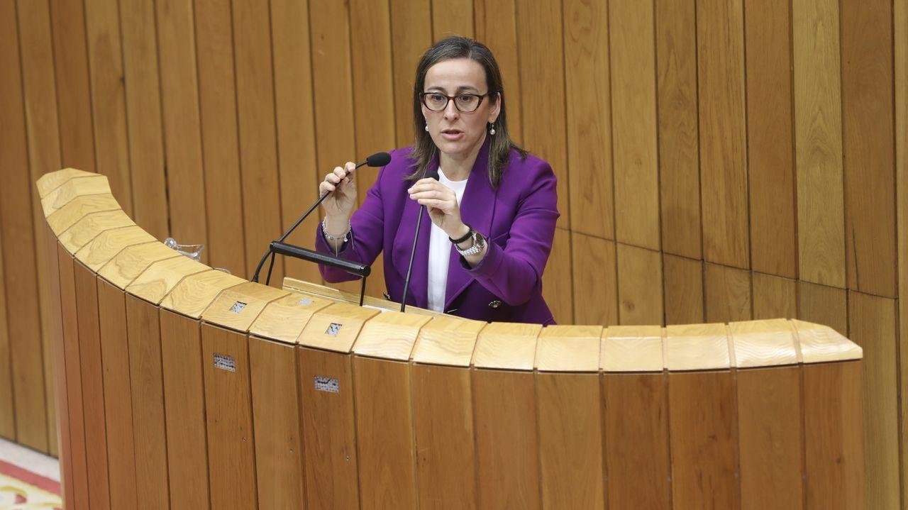 Foto de archivo de la conselleira de Infraestruturas en el Parlamento