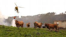 Extinción de los incendios en Asturias