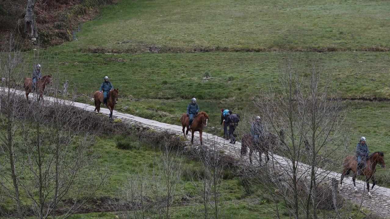 Un grupo del escuadrón de Caballería de la Guardia Civil, en el entorno de la ladea de Morgade, en Paradela
