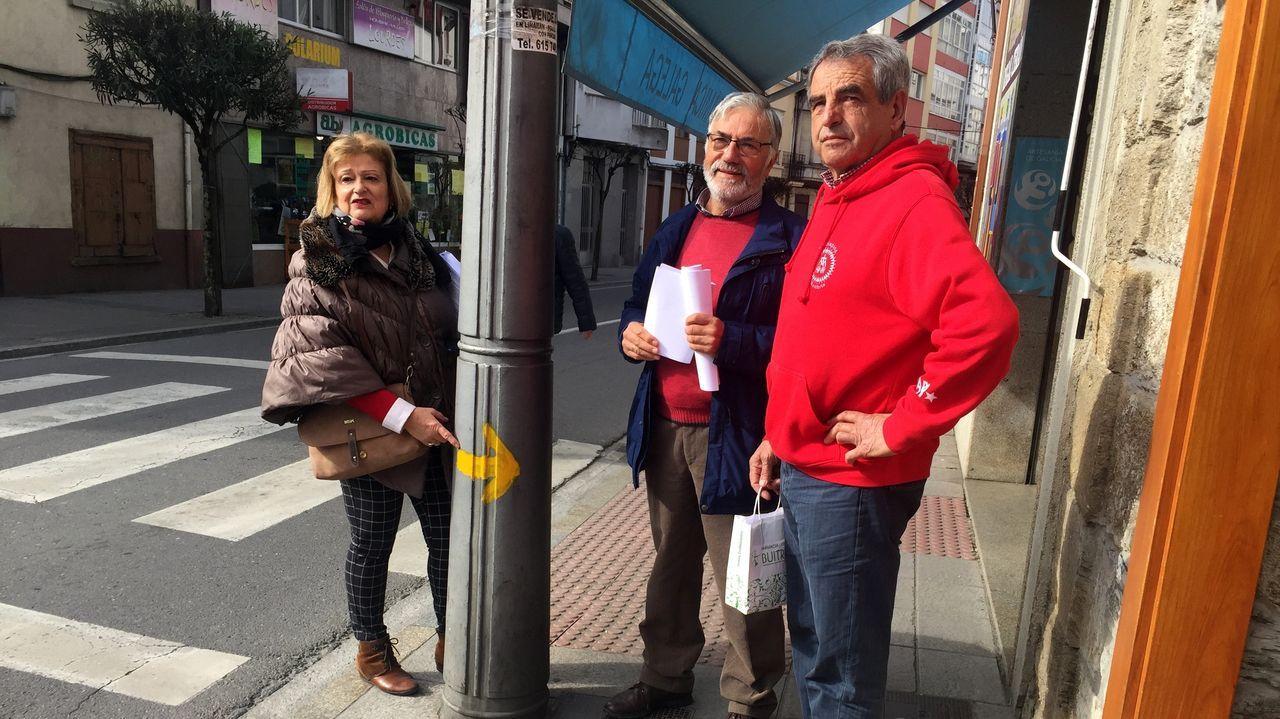Aida Menéndez, Francisco Rodríguez y Manuel Eiriz, directivos de la asociación, junto a una de las señales que repintaron en la calle Roberto Baamonde
