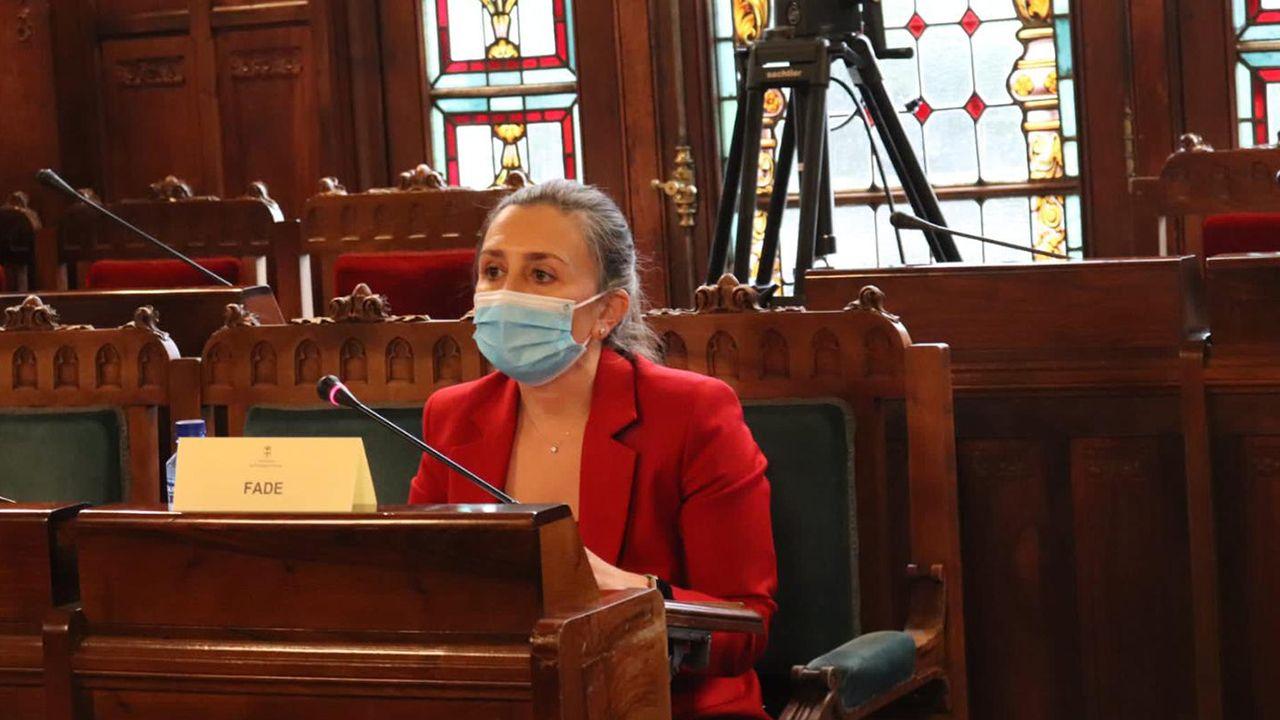 María Calvo, vicepresidenta de FADE