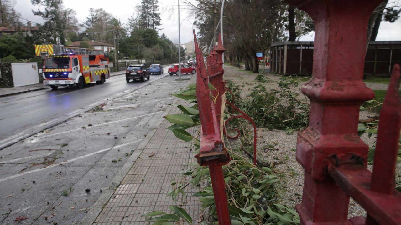 Árboles caídos, fuertes vientos y mucho oleaje entre los efectos de Helena.Una intensa lluvia en las calles de Oviedo