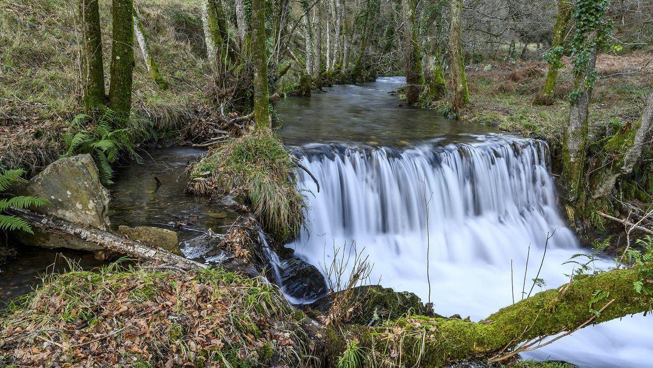 La presa del Muíño se usaba para moler y para regar los prados