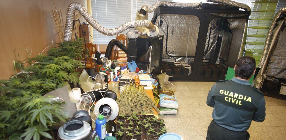La escena de la pizza de «Breaking Bad».Los agentes localizaron en el trastero toda clase de útiles y dispositivos para potenciar el crecimiento de las plantas de marihuana.