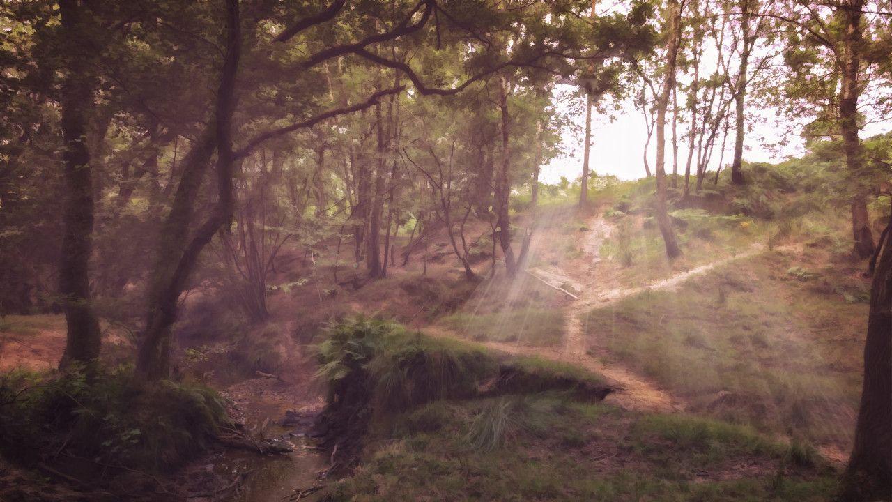Bosque de Ashdown