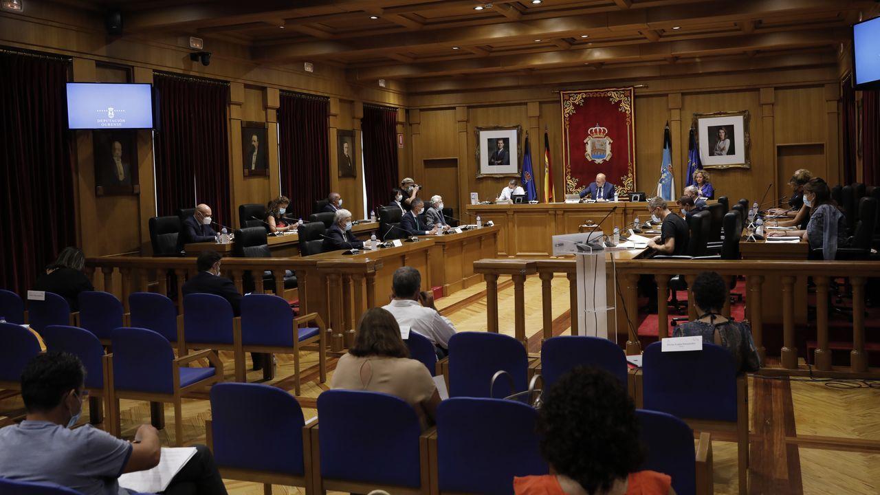 Presentación de una vivienda de madera en Outón (Outeiro de Rei).El pleno se celebró de nuevo con medidas anti covid-19 y los diputados repartidos por la sala