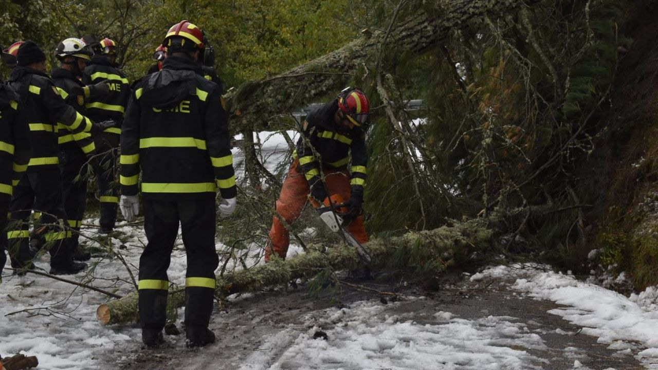 Los efectivos realizan trabajos de corte con motosierra de árboles caídos para así poder despejar las vías con ayuda de las cuñas