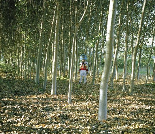 Una de las imágenes de Germade incluidas en la exposición.
