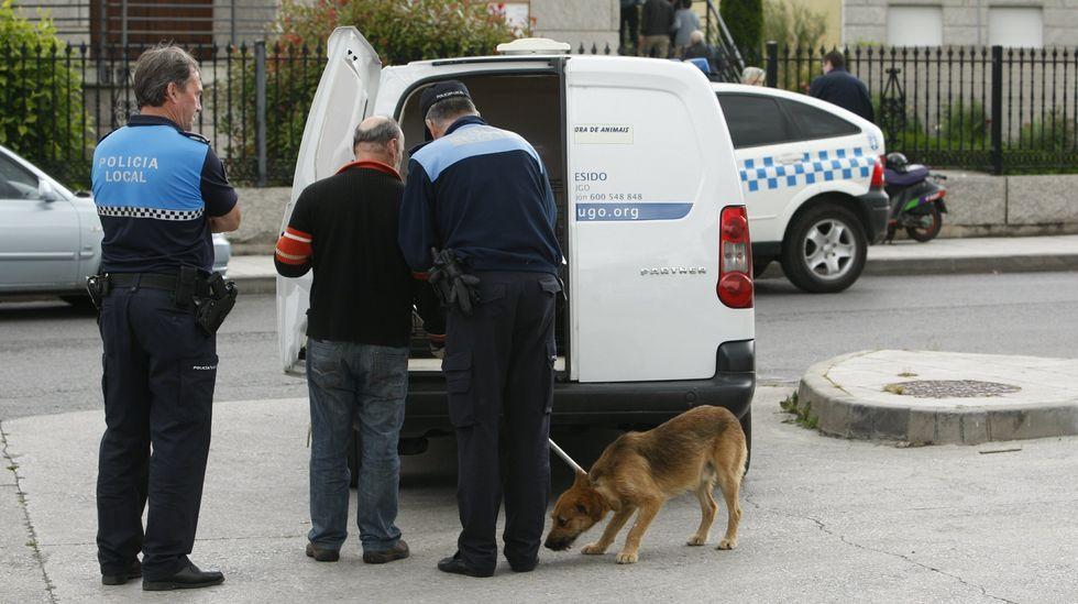 Agentes de la Policía Local de Monforte recogen un perro abandonado, en una foto de archivo.