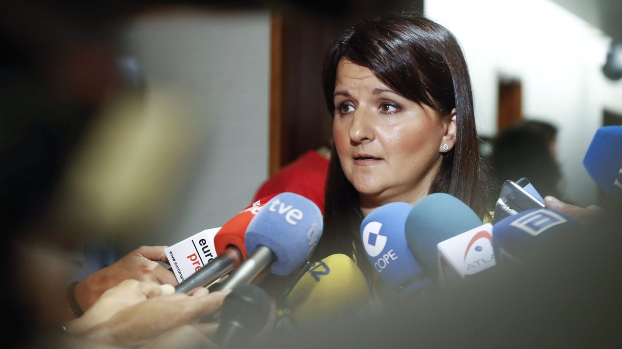 Obras en la variante de Pajares.La portavoz de Ciudadanos en la Junta General del Principado, Laura Pérez-Macho